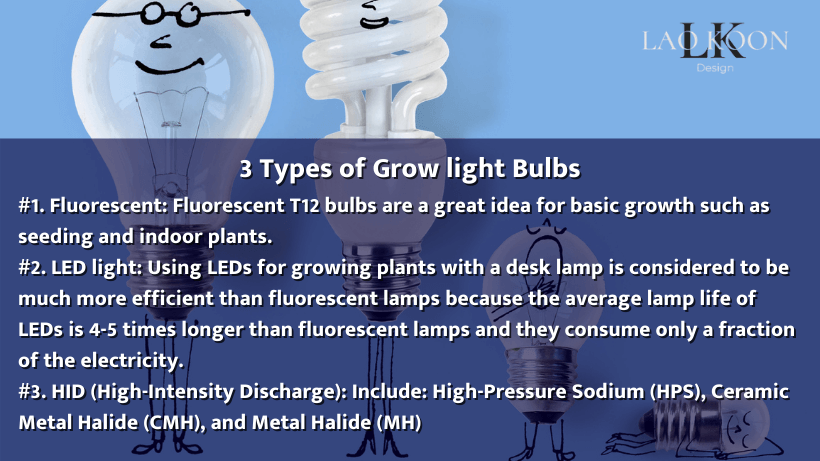 3 Types of Grow light Bulbs