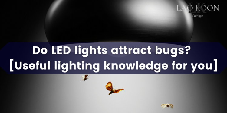 Do LED lights attract bugs