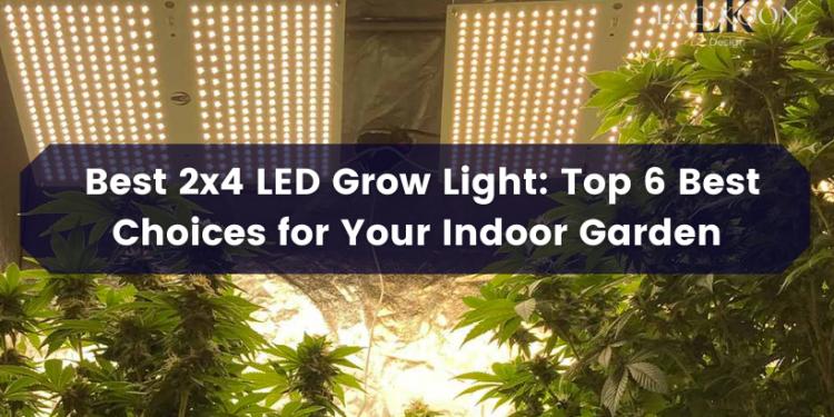 Best 2x4 led grow light